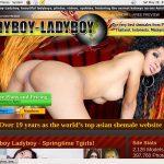 Ladyboy Ladyboy Premium Logins